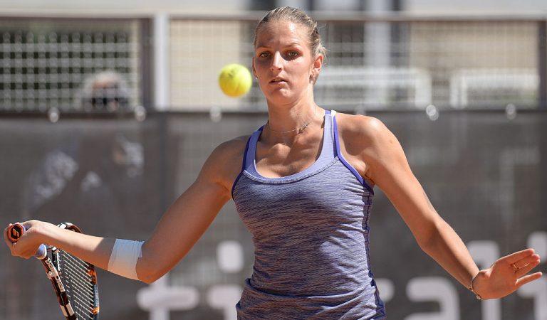 Karolína Plíšková sexy tennis star